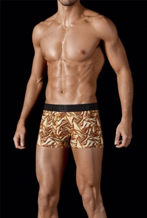 Boxer-de-oferta-hot-by-impetus