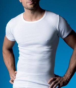 camiseta-manga-corta-hombre-abanderado-306