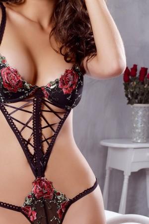 trikini-lenceria-sexy-escante-rosas