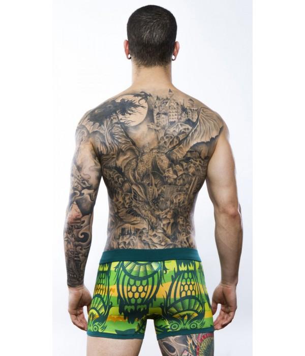 Boxer buhos Discover Underwear Verde